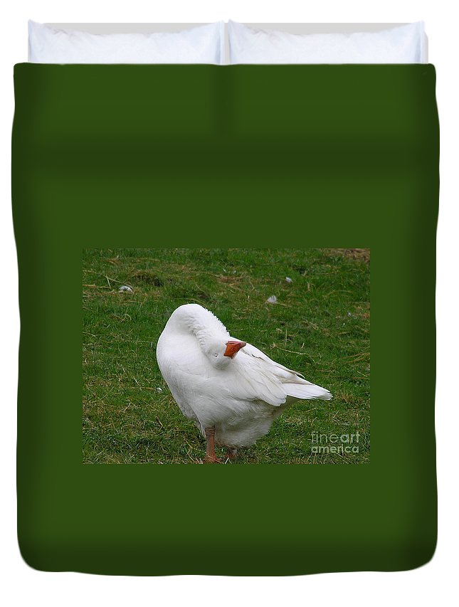 Goose Duvet Cover featuring the photograph Silly Goose by Louise Magno