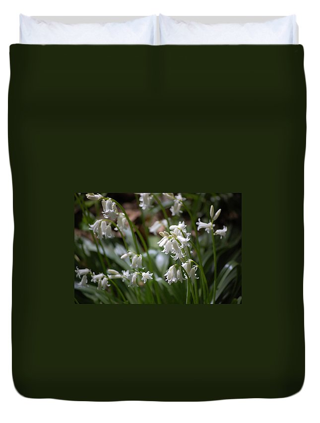 Landscape Duvet Cover featuring the photograph Silver Bells by David Lane
