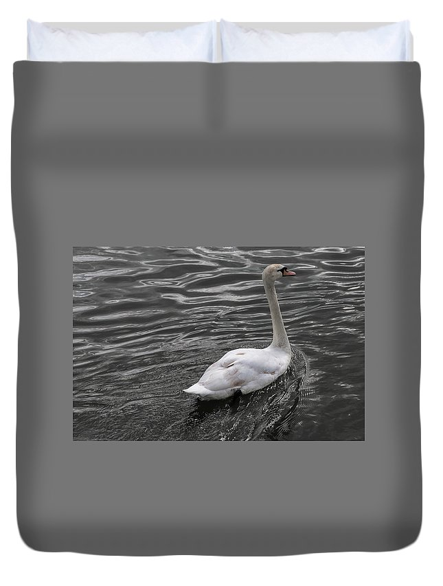 Swan Duvet Cover featuring the photograph Silver Swan by John Daly