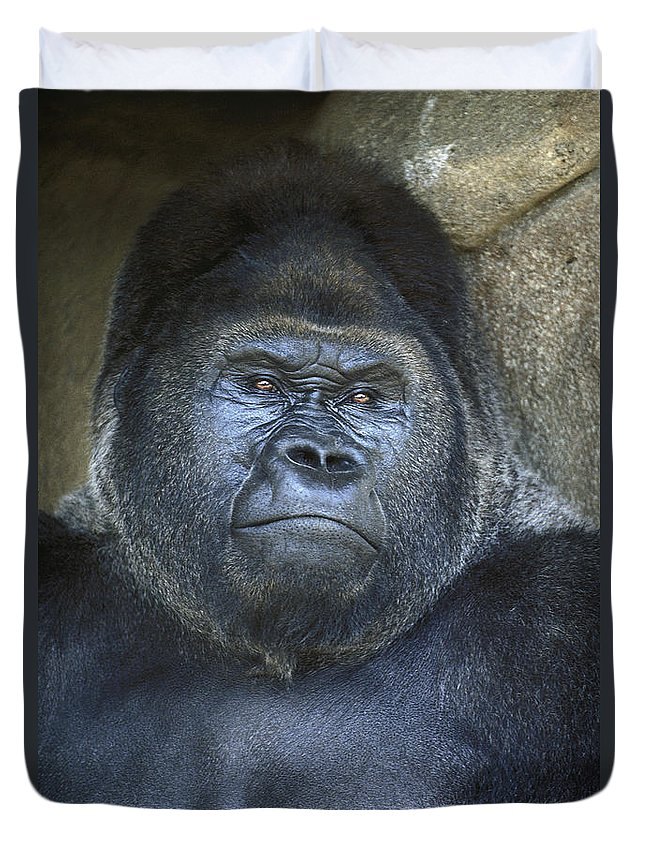Gorilla Duvet Cover featuring the photograph Silverback Portrait by Paul W Faust - Impressions of Light