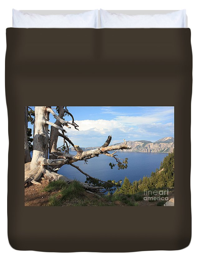 Crater Lake Duvet Cover featuring the photograph Silvery Tree Over Crater Lake by Carol Groenen
