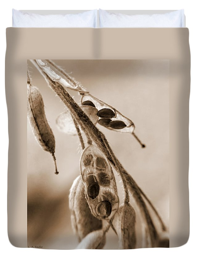 Macro Duvet Cover featuring the photograph Simplicity In Sepia by Lauren Radke