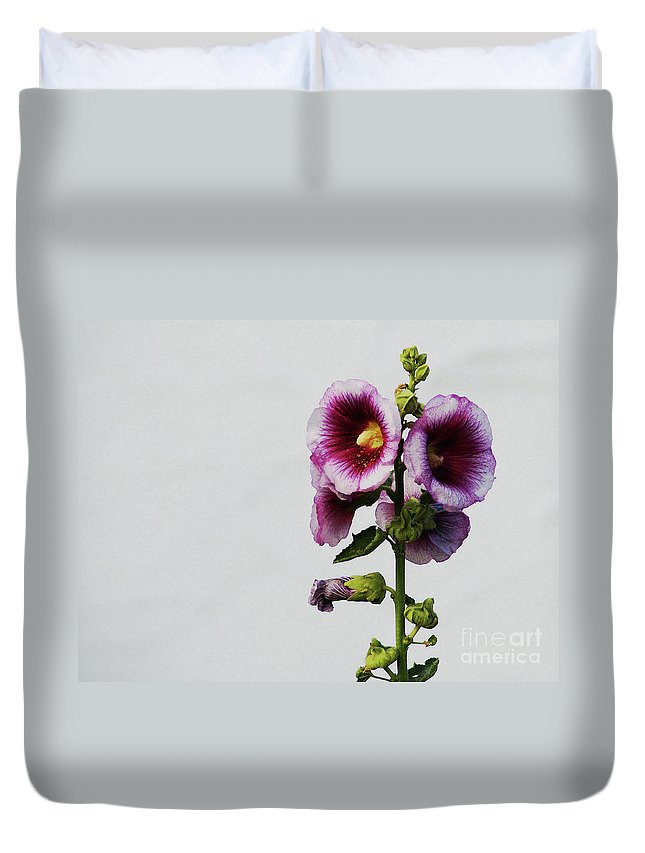 Flower Duvet Cover featuring the photograph Simply Stated by Linda Shafer