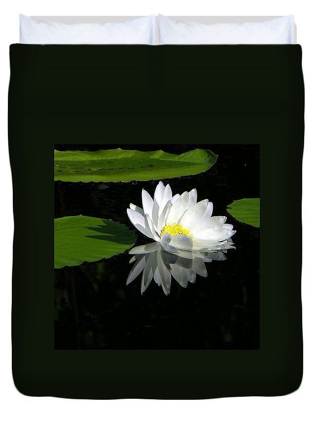 Water Lily Duvet Cover featuring the photograph Simply White on Black by John Lautermilch