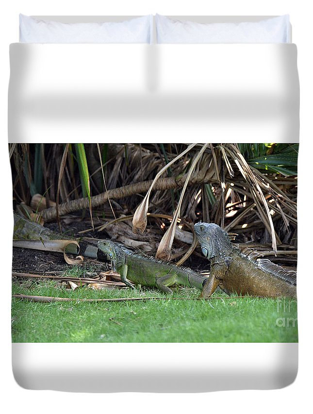 Iguana Duvet Cover featuring the tapestry - textile Single File by Edna Weber