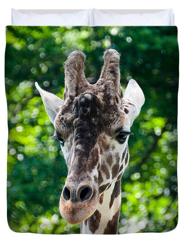 Giraffe Duvet Cover featuring the photograph Single Giraffe by Jennifer Wick