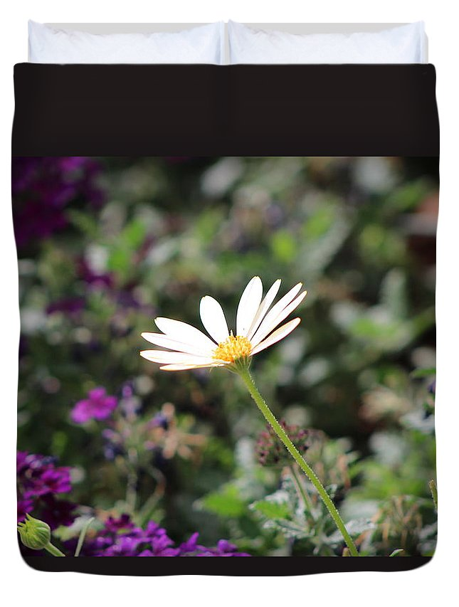 California Desert Duvet Cover featuring the photograph Single White Daisy On Purple by Colleen Cornelius