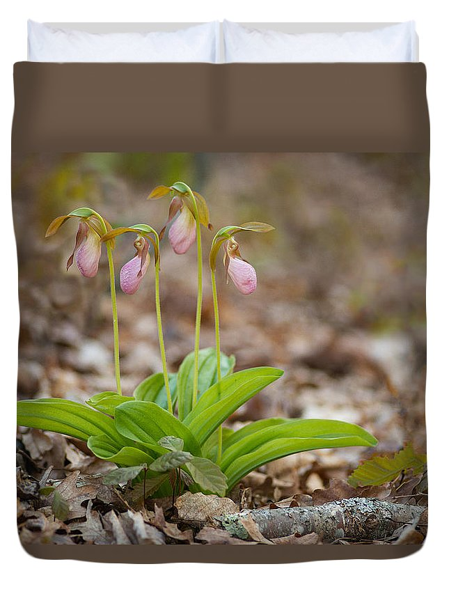 Spring Duvet Cover featuring the photograph Sisters by Joye Ardyn Durham