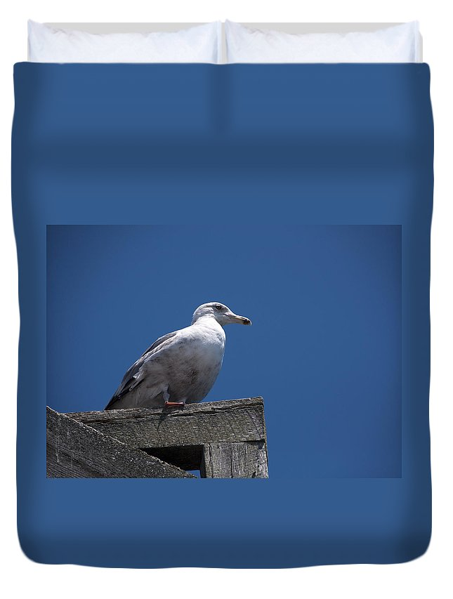 Dock Duvet Cover featuring the photograph Sitting By The Dock Of The Bay by Steven Natanson