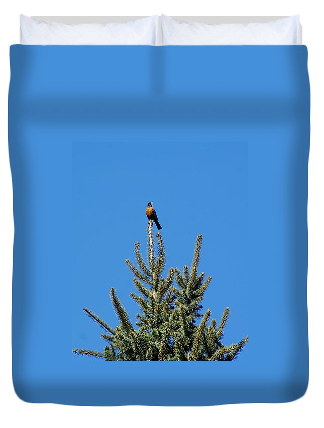 Birds Duvet Cover featuring the photograph Sitting On Top Of The World 2 by Ben Upham III