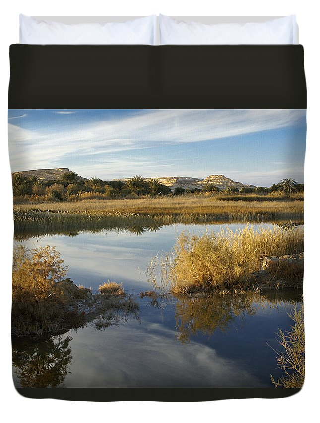 Egypt Duvet Cover featuring the photograph Siwa Oasis by Michele Burgess