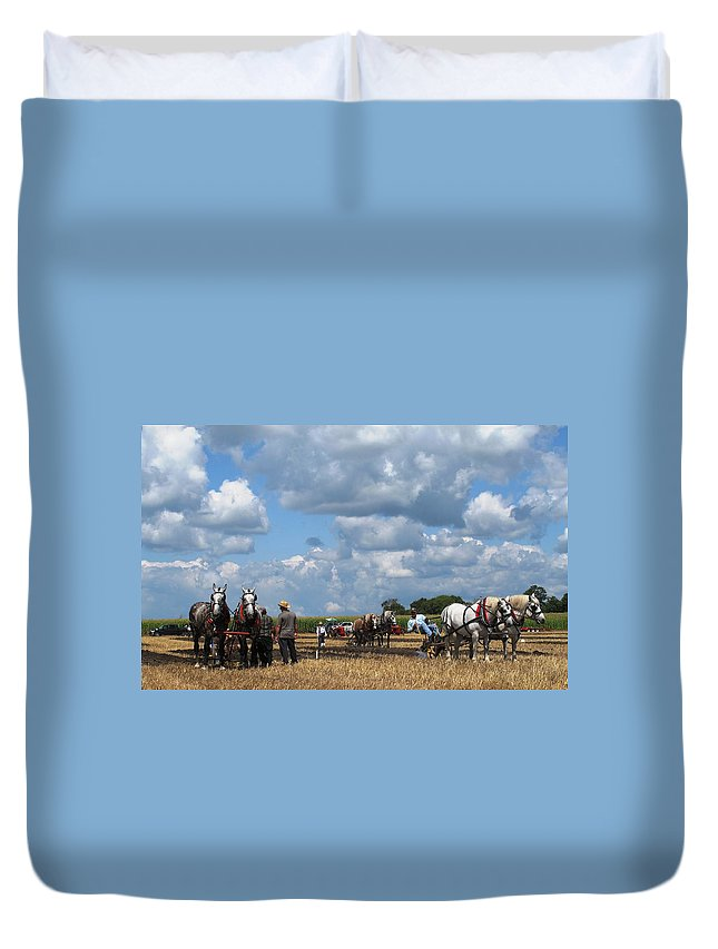 Horse Duvet Cover featuring the photograph Six Horses by Ian MacDonald