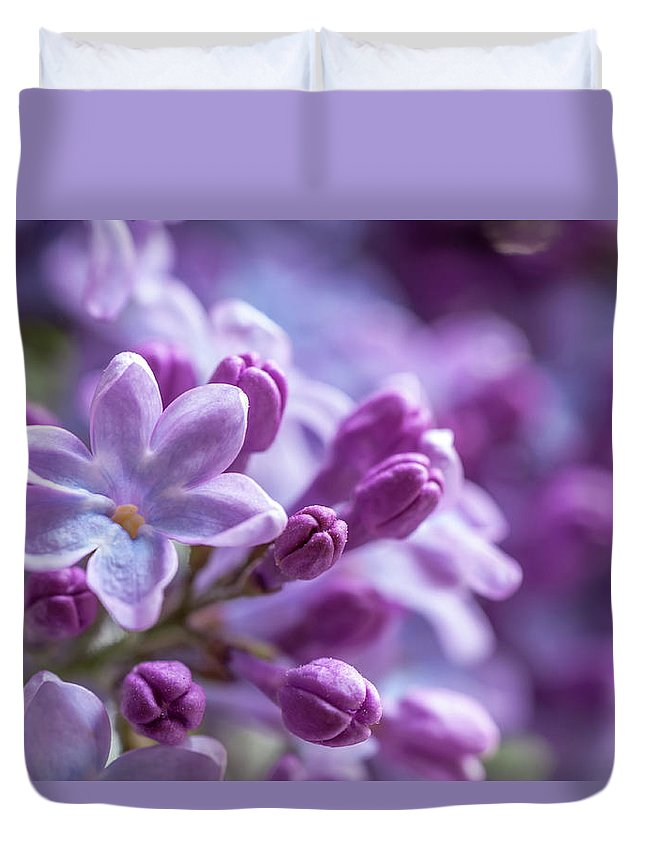Jenny Rainbow Fine Art Photography Duvet Cover featuring the photograph Six Petals Double Happiness by Jenny Rainbow
