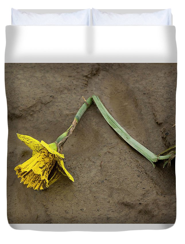 Daffodil Duvet Cover featuring the photograph Skagit Valley Roadkill by Bob Stevens