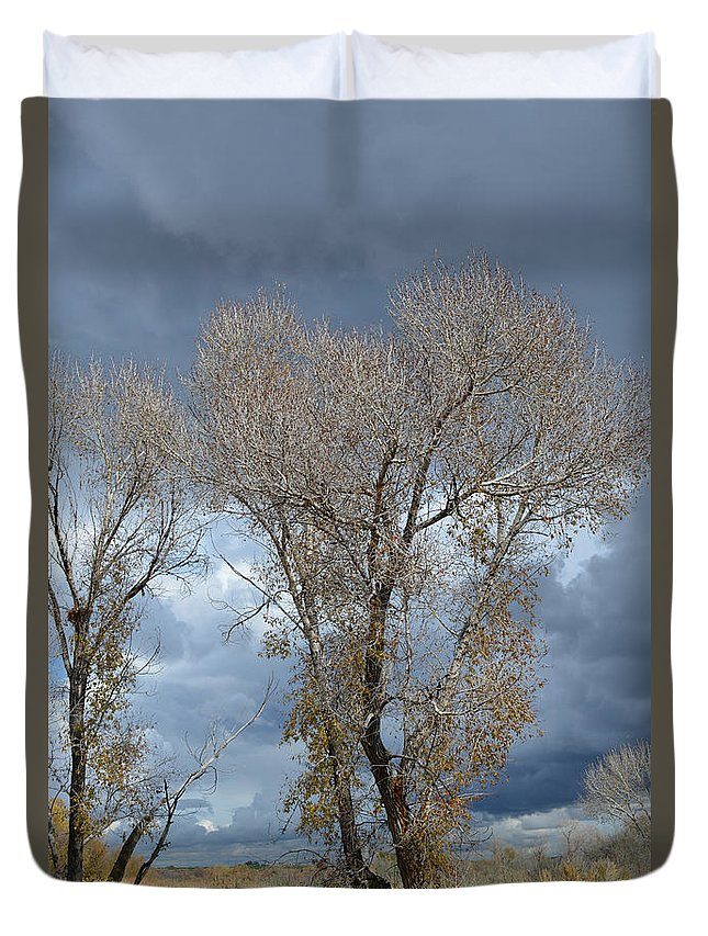 Idaho Duvet Cover featuring the photograph Skeleton Trees by Gale Cochran-Smith