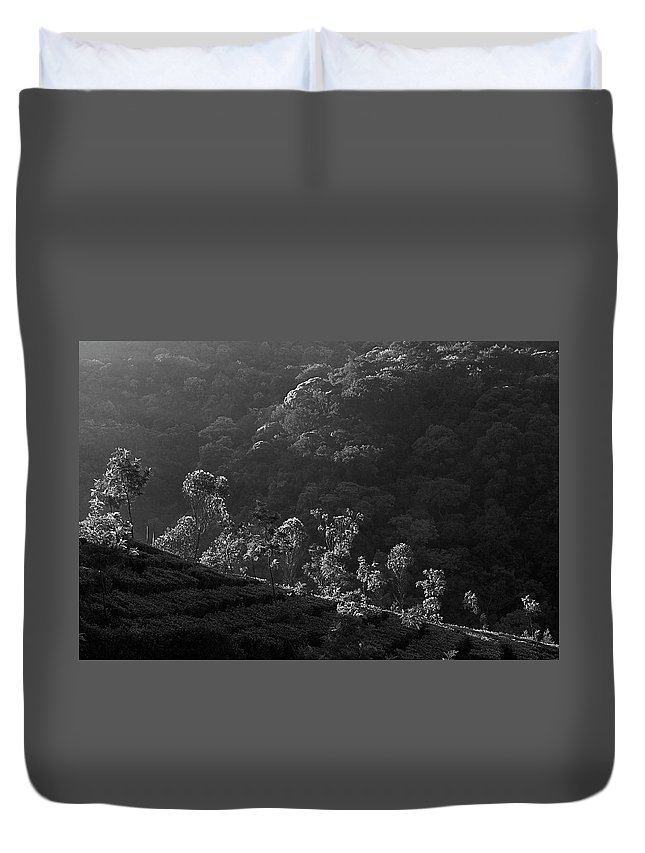 Agriculture Duvet Cover featuring the photograph Skn 6707 Tree Parade. B/w by Sunil Kapadia