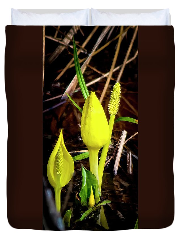 Nature Duvet Cover featuring the photograph Skunk Cabbage by Albert Seger