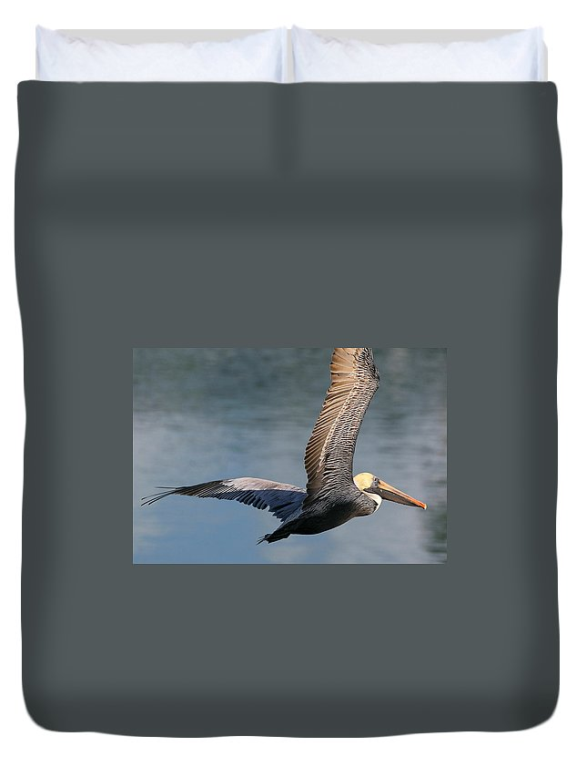 Nature Duvet Cover featuring the photograph Sky High by David Rosenthal