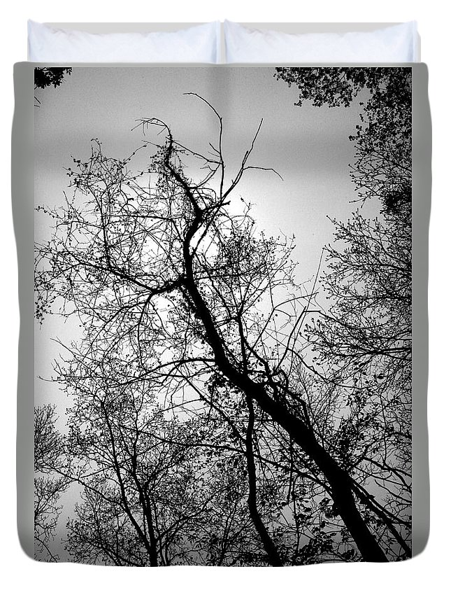 Tree Duvet Cover featuring the photograph Twisted Beauty by Randy Oberg