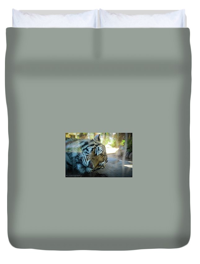 Sleeping Cat Duvet Cover featuring the photograph Sleepy Kitty by RLS Artography