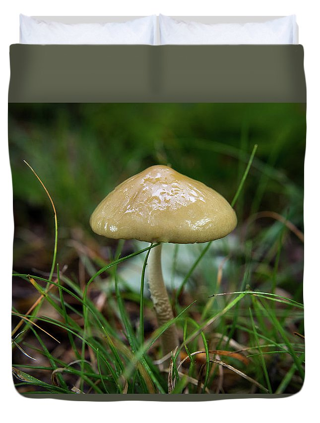 Basideomycete Duvet Cover featuring the photograph Slick Slimy Toadstool by Douglas Barnett