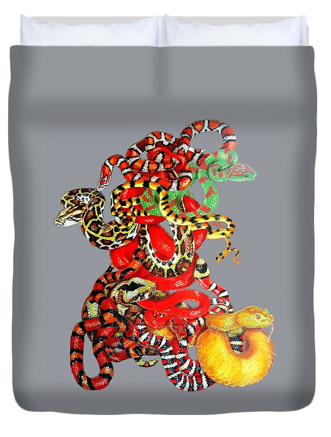 Reptile Duvet Cover featuring the drawing Slither by Barbara Keith