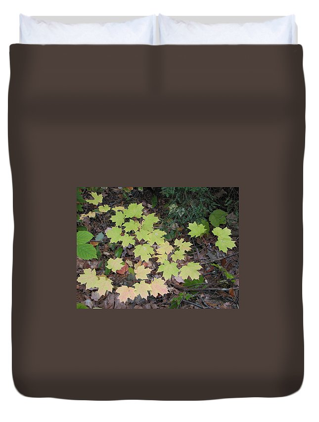 Leaves Duvet Cover featuring the photograph Slow Fade by Kelly Mezzapelle