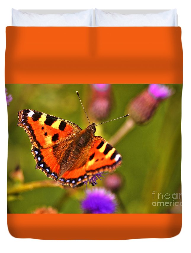 Urticae Duvet Cover featuring the photograph Small Tortoiseshell by Esko Lindell