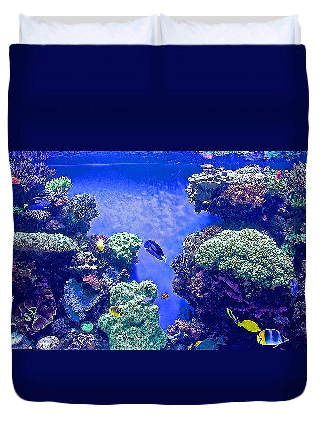 Smaller Fish In Monterey Aquarium Duvet Cover featuring the photograph Smaller Fish In Monterey Aquarium-california by Ruth Hager