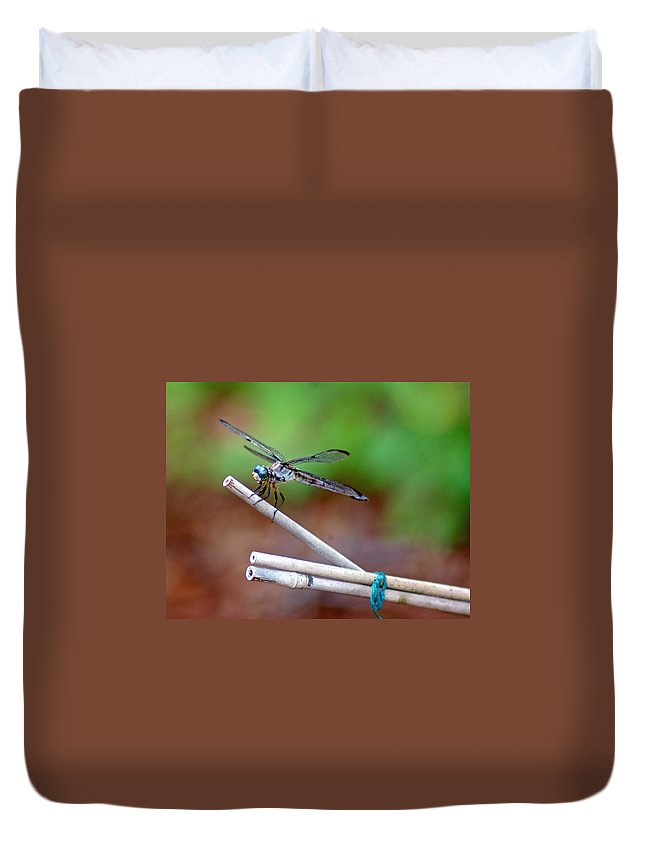 Dragon Fly Duvet Cover featuring the photograph Smile Pretty by Donna Bentley