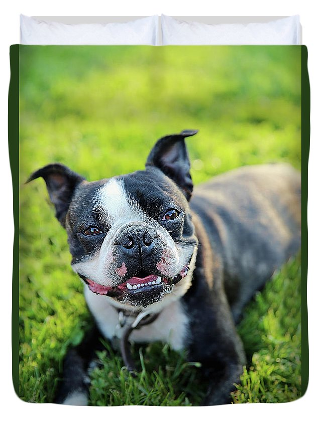 Dog Duvet Cover featuring the photograph Smiling Dog by Heather Sesnowitz