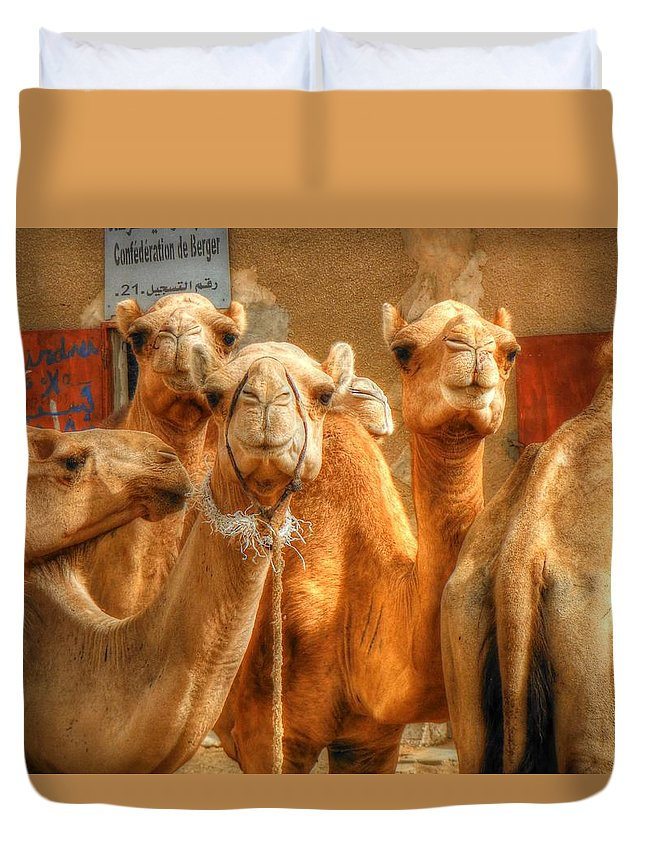 Camel Duvet Cover featuring the photograph Smiling Faces by Nicholas Mariano