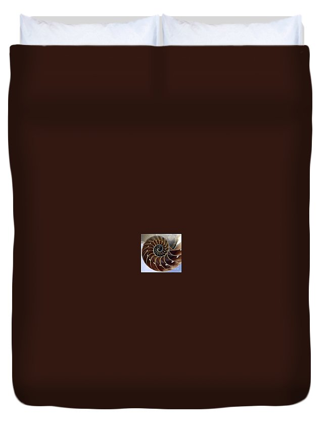 Snail Duvet Cover featuring the photograph Snail by Dragica Micki Fortuna