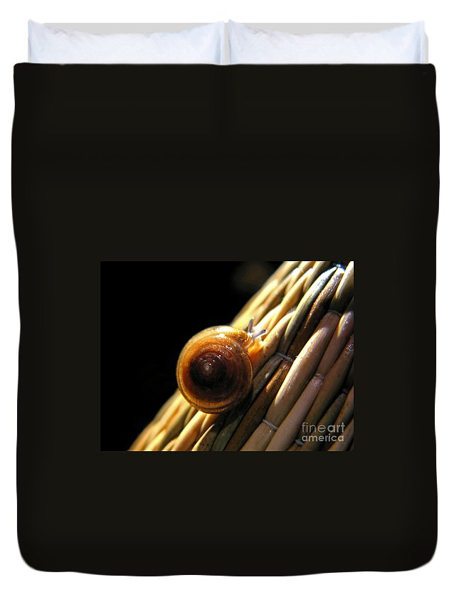 Macro Duvet Cover featuring the photograph Snail by Todd Blanchard