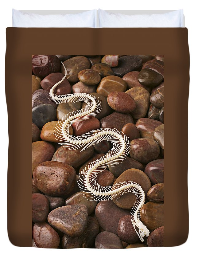 Snake Duvet Cover featuring the photograph Snake Skeleton by Garry Gay