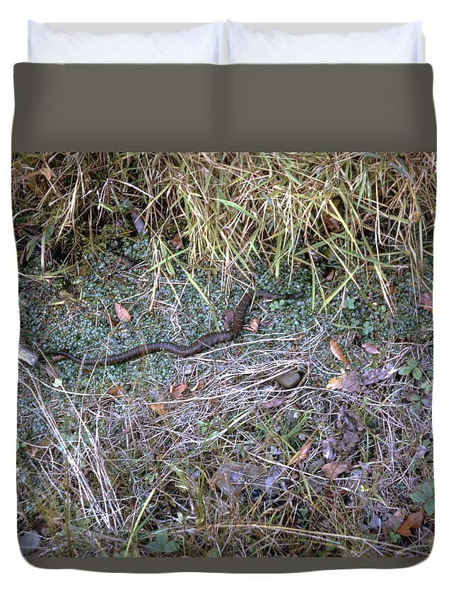 Snake Duvet Cover featuring the photograph Snakesssss by Delbert Larkin