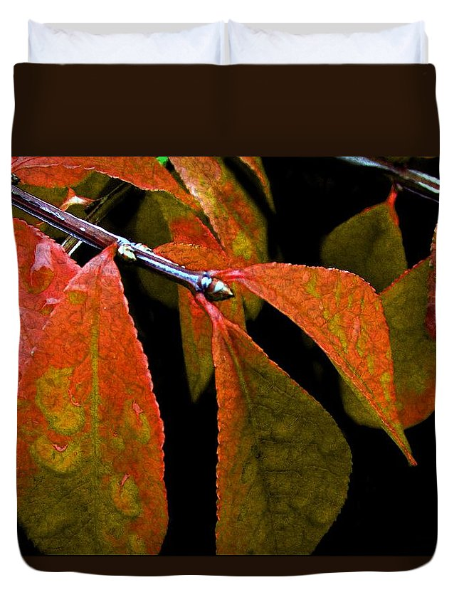 Autumn Duvet Cover featuring the digital art Snippet Of Fall by RC DeWinter