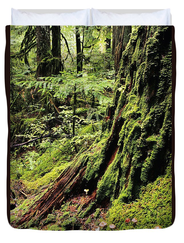 Baker Duvet Cover featuring the photograph Snoqualmie National Forest by Greg Vaughn - Printscapes