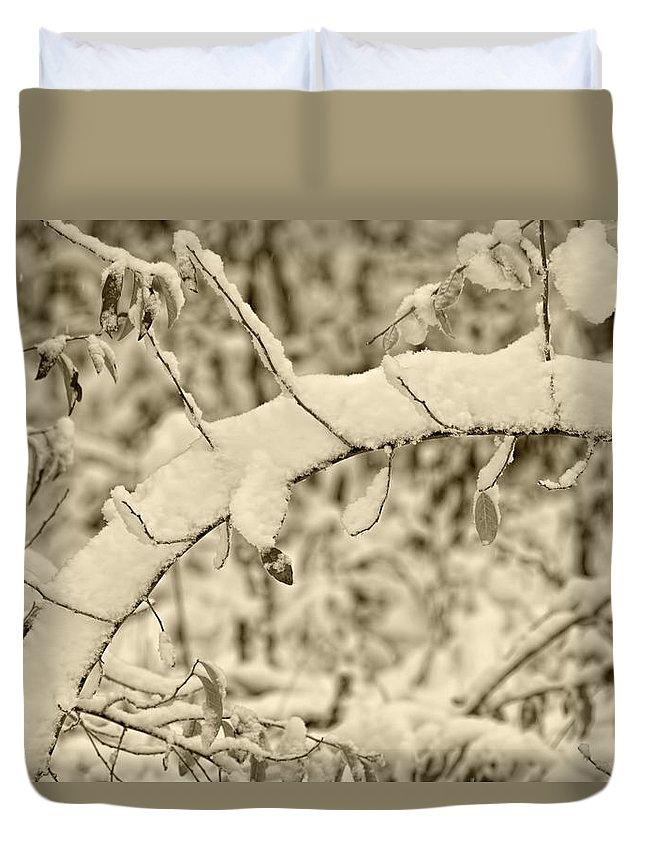 Snow Duvet Cover featuring the photograph Snow Arch by LeeAnn McLaneGoetz McLaneGoetzStudioLLCcom
