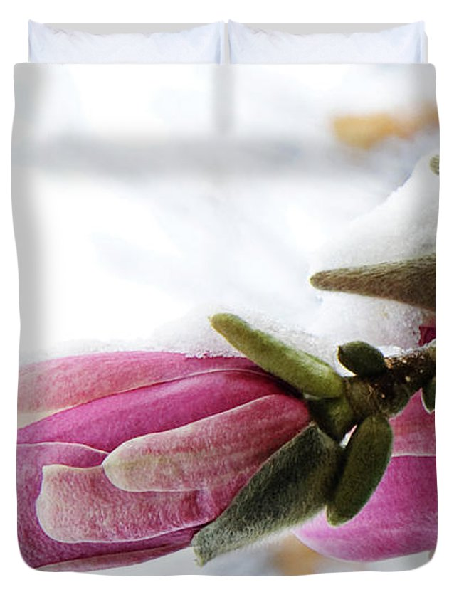 Magnolia Blossoms Duvet Cover featuring the photograph Snow Capped Magnolia Blossoms by Andee Design