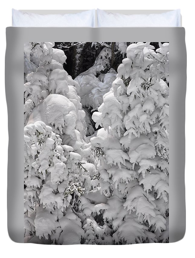 Snow Duvet Cover featuring the photograph Snow Coat by Alex Grichenko