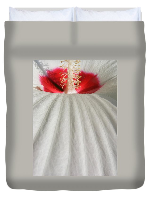 Still Life Duvet Cover featuring the photograph Snow Covered Hill by Ed Smith