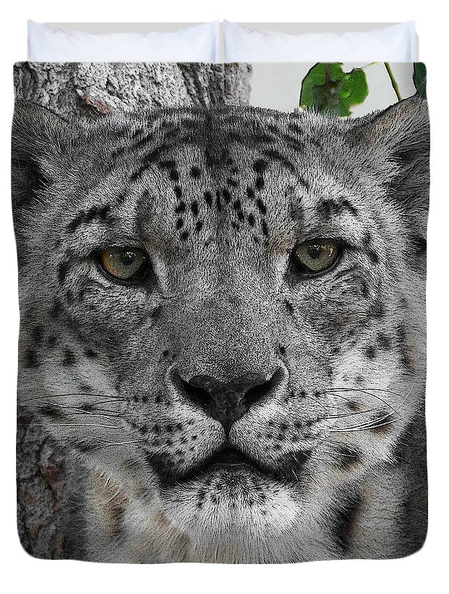 Animals Duvet Cover featuring the photograph Snow Leopard 5 Posterized by Ernie Echols