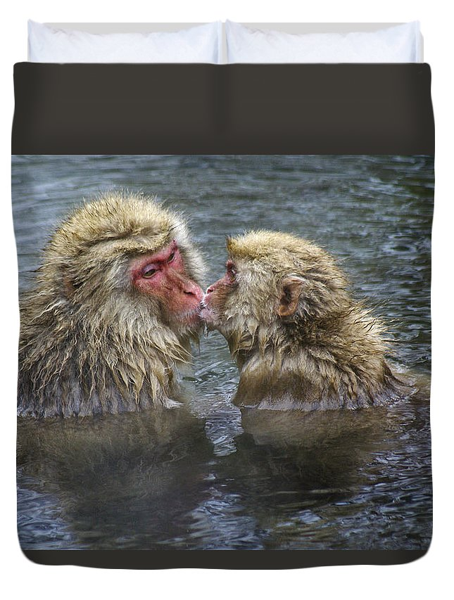 Snow Monkey Duvet Cover featuring the photograph Snow Monkey Kisses by Michele Burgess