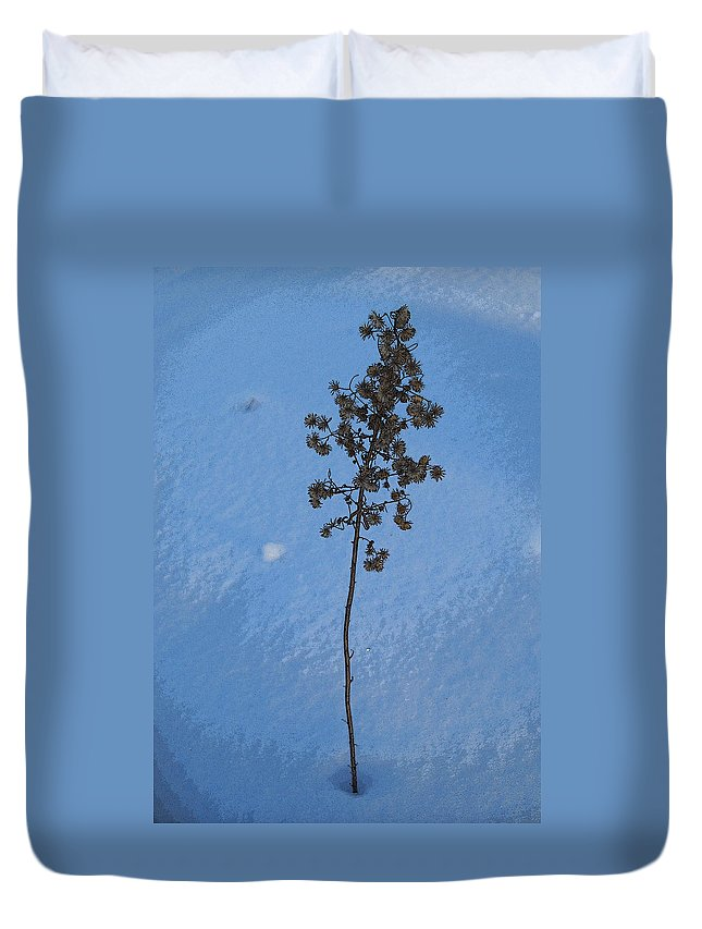 Wisconsin Duvet Cover featuring the photograph Snow Sleeper by Julia Raddatz