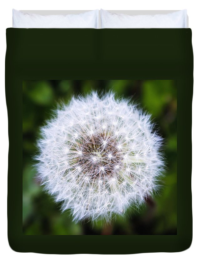 Dandelion Duvet Cover featuring the photograph Snow White Dandy by LeAnne Perry