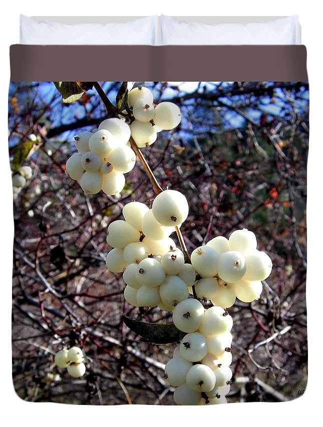 Autumn Duvet Cover featuring the photograph Snowberries by Will Borden