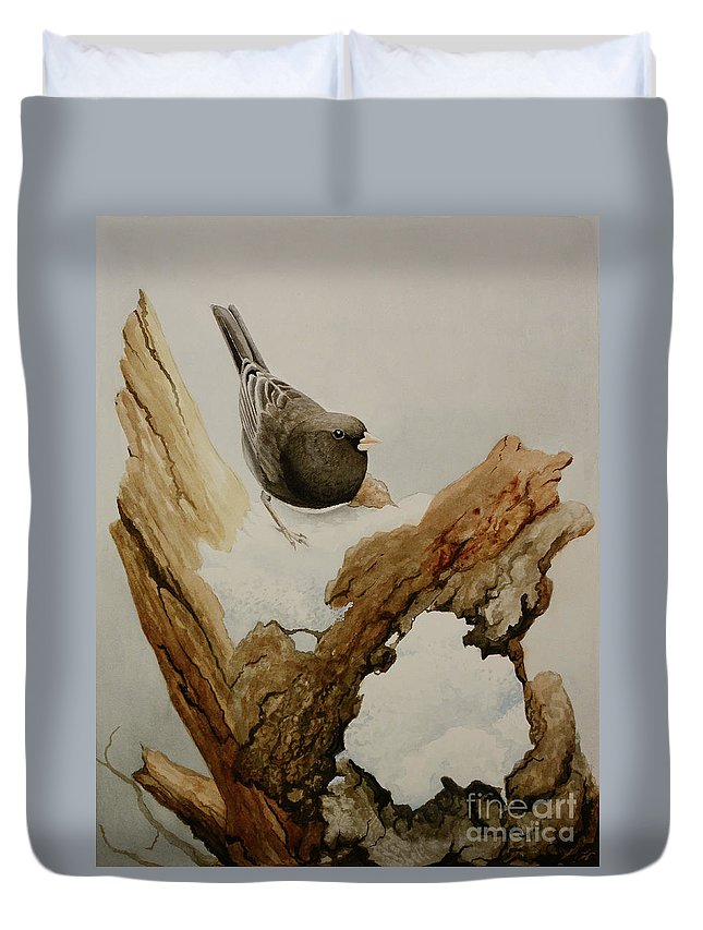 Junco Duvet Cover featuring the painting Dark-eyed Junco by Charles Owens