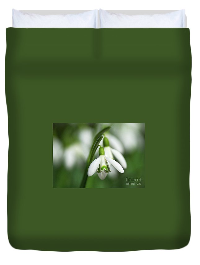 Snowdrops Duvet Cover featuring the photograph Snowdrops by Sharon Talson