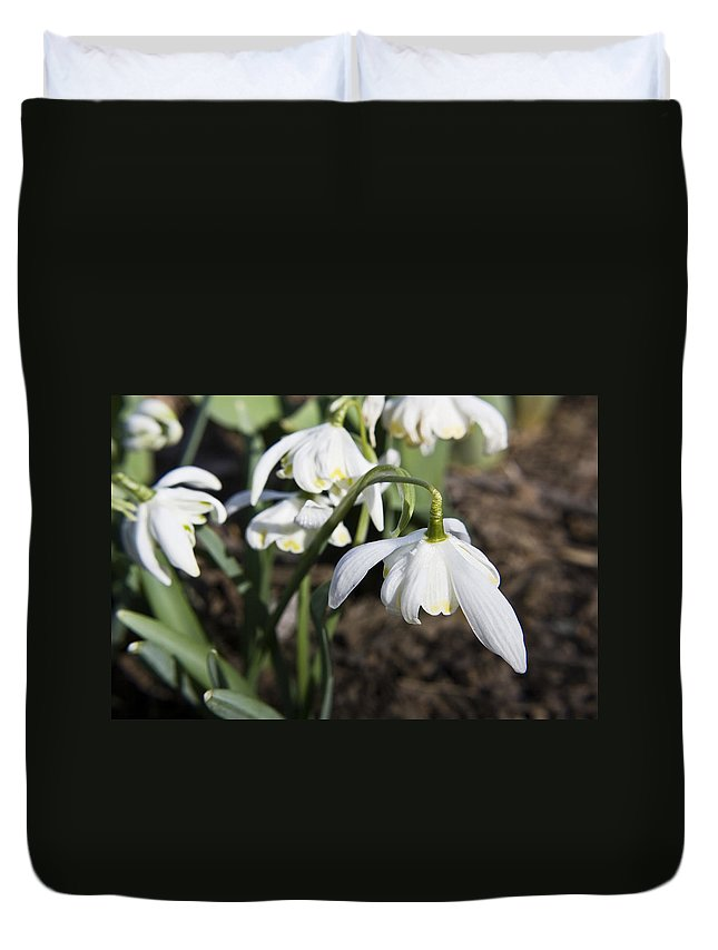 Snowdrops Duvet Cover featuring the photograph Snowdrops by Teresa Mucha